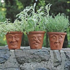 idea, face pot, terracotta pot, herb, facepot, planter, whimsical garden, clay pots, garden pots