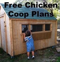 Free chicken coop plans to build a backyard chicken coop
