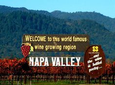 wines, the vineyard, wine country, wine tasting, wine tour, napa valley, place, bucket lists, wineri