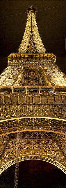 Eiffel Tower (vertical panorama) SO BEAUTIFUL! Wish I could have gotten a pic like this