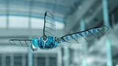 BionicOpter Robot Dragonfly