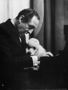 Pianist Vladimir Horowitz at the piano with his white mini poodle