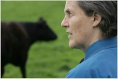 All six interviews with Dr Temple Grandin all in one place ~ Asperger's Syndrome.