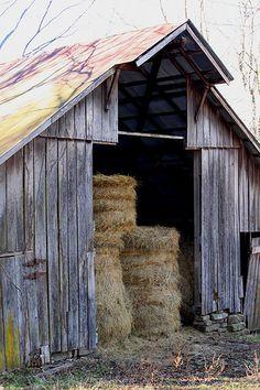 old barn #provestra
