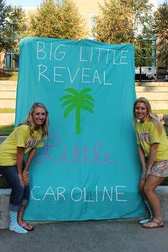 Big Little Reveal! Alpha Omicron Pi  AH Mary Faith & Caroline!