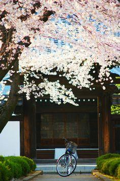 Daishoji, Japan