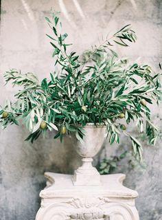 Olive branch arrangement in urn