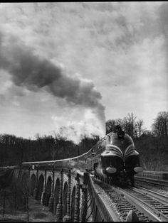 British Train the