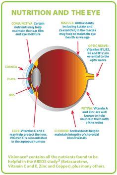 Nutrition is important for eye health! eye care, healthy eyes, eyecare, healthi eye, eye health, eyehealth, eye condit, health tidbit
