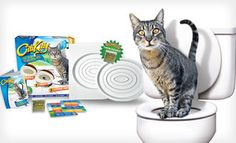 Groupon - $18 for a CitiKitty Cat Toilet-Training System ($30 List Price). Free Shipping and Free Returns. in Online Deal. Groupon deal price: $18.0.00