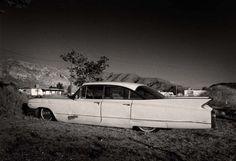 1960 Cadillac print