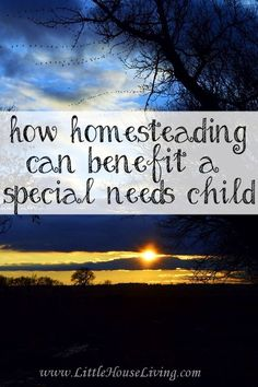 Ways that homesteading can benefit a special needs child and family.