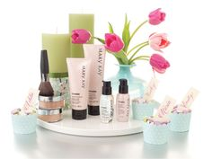 Introduce your guests to Mary Kay® skin care at a Love Your Skin Party! Guests can experience the latest age-defying skin care like the TimeWise® Miracle Set®, Botanical Effects™ Skin Care, the Mary Kay® Clear Proof™ Acne System, or the TimeWise Repair™ Volu-Firm™ Set!