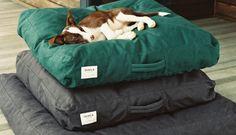 Shinola Medium Dog Bed | Shinola®