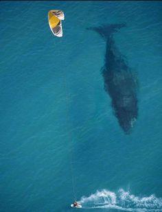 Kite surfing . Holly crap