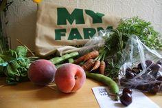Backyard Farmers: 25 Websites You Should Be Reading organic gardening, farmers, backyard farming, 25 websit, backyard farmer, veg garden, homestead, backyards, edible flowers