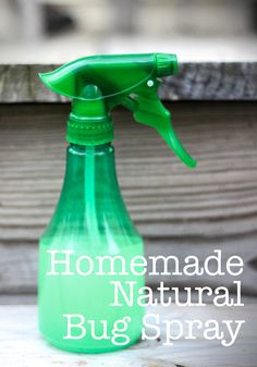 natural bug spray, bug spray diy