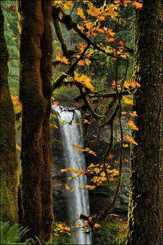 autumn, South Falls, Silver Falls State Park, Oregon