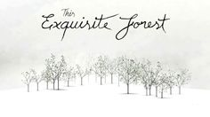 "Why did the Monster Judges choose ""This Exquisite Forest"" by Google Creative Lab? Watch and see."