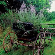 A rusted wreck, like this broken-down carriage or a vintage tractor, becomes a focal point in the garden, drawing visitors to far corners that might otherwise go ignored. | Photo: Richard Felber | thisoldhouse.com