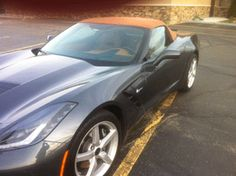 Love the color combo of this new Vette I saw while out for dinner.