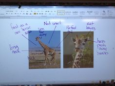 Amazing website for inquiry based learning#Repin By:Pinterest++ for iPad#