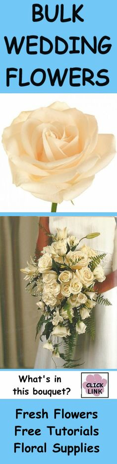 http://www.wedding-flowers-and-reception-ideas.com/ivory-rose-wedding-bouquet.html - Product list for all the fresh flowers and florist hard goods needed to make this wedding bouquet.