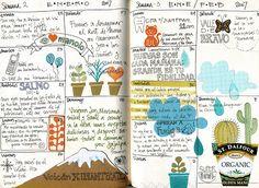 Daily Journaling