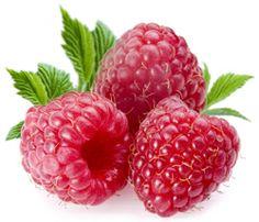 Raspberry Bush Care