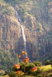 Carr Canyon Waterfall ~ Sierra Vista AZ
