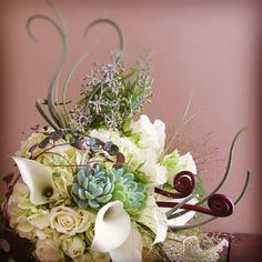 #airplant #bouquet #weddingbouquet #succulent #succulentbouquet #plant #flowers http://www.russwholesaleflowers.com/wholesale-succulent-sale  RusswholesaleFlowers.com offers the best wholesale succulent prices available to the public online.  wholesale succulents for bouquets, special events, wreaths, diy and more.  3 different sizes to meet your needs.