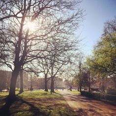 London in the sun on a bright afternoon in Hyde Park 11°C I 52°F #BurberryWeather