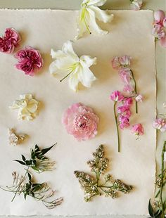 Guide to using flowers by scent