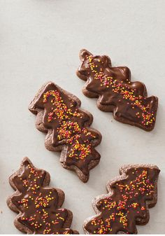 Chocolate Leaf Cookies -- As pretty as they are, real leaves don't hold a candle to our beautiful (and scrumptious!) Chocolate Leaf Cookies--sure to be a dessert hit at your next fall get-together.