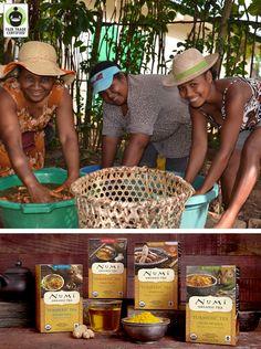 Welcome to the world #FairTrade Turmeric! Learn how @numitea led the charge to certify an incredible turmeric farm in Madagascar for their new line of teas: http://fairtrd.us/1sRHEAv #BeFair #tea