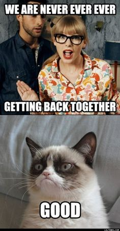 Taylor Swift - We Are Never Ever Getting Back Together taylor swift, god, grumpi cat, funni, thought, kitty, baby cats, meme, grumpy cats