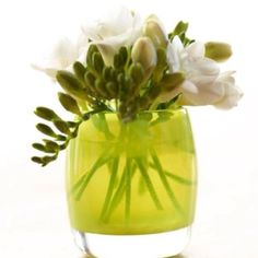 First Day of Spring:  freesias in a green glassybaby!