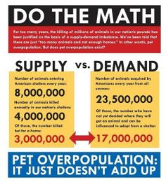No need to kill shelter animals.  Where are all the adoptions?