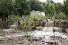 Floodwater-exposed crops may be total loss #Boulderflood | Boulder Weekly