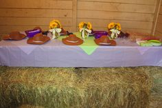 """totally pinterest-infused cowgirl party!      lots of links to ideas and inspiration on my """"little girl's birthday"""" board"""
