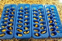 Cheap Garbage Disposal Cleaner/Deodorizer   Slice lemons, put in ice cube trays and cover with vinegar. Freeze. Store in a ziplock bag. Pop one of these little cubes in the garbage disposal and grind away! Use these all the time! Love them!