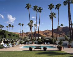 california girl, palm springs hotel, parker palm, travel, palm springspool, place, sparrow hotel, palms, california state