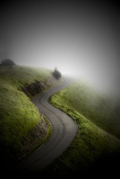 into the mist.