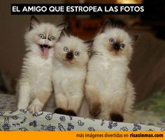 El amigo que estropea las fotos. The friend that messes up you picture, Lol!!!