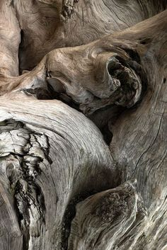 driftwood, pattern, abstract art, tree trunks, textur, natur, weathered wood, old wood, wood grain