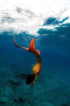 mermaids <3