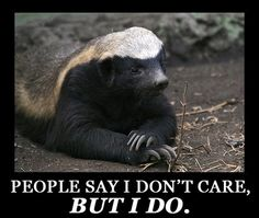 Honey Badger Does Care.