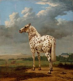"The ""Piebald"" Horse,"