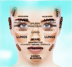 Chinese Facial Reading Chart | The Dr. Oz Show
