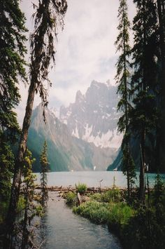 camp, dream, the view, rocky mountains, forest, lake, kayak, place, into the wild